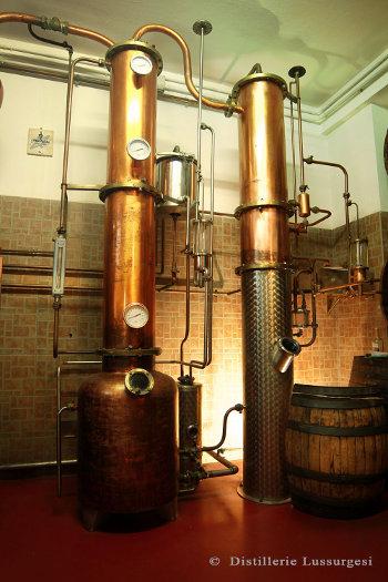 Spirito imprenditoriale – la nascita del Brandy di Sardegna.