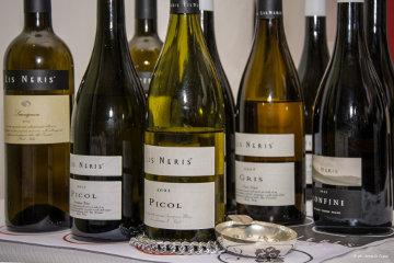 Lis Neris – Wine Experience