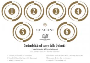 Sostenibilità ai piedi delle Dolomiti - I bianchi trentini dell'azienda Cesconi