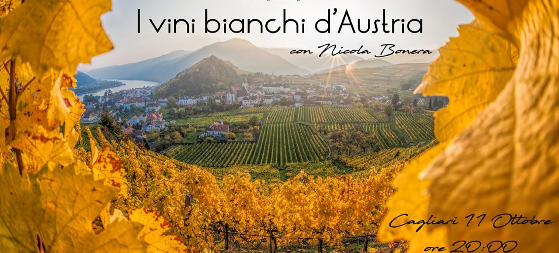 Sul bel Danubio blu, un incontro con i vini bianchi d'Austria